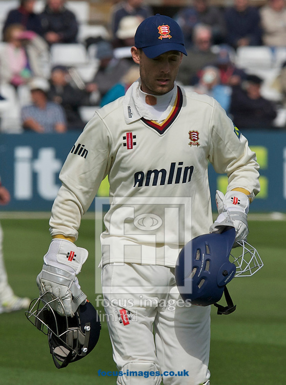 Picture by Alan Stanford/Focus Images Ltd +44 7915 056117.29/04/2013.Wicket Keeper and Captain James Foster of Essex County Cricket Club brings the protective up to the during the LV County Championship Div Two match at the County Ground, Chelmsford, Chelmsford..