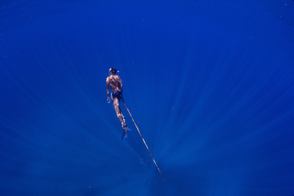 A migrant fisherman free-diving for sea cucumbers on a rocky reef, west of the Barren Isles, Madagascar.  As for sharks, the populations of sea cucumbers in southwest Madagascar have collapsed and traditional fishermen must migrate to find still productive fishing grounds in remote areas far offshore.  Even here, they are now struggling to find large seacucumbers and must free-dive to the limit of their abilities to fetch them.  They carry long spears, not because sea cucumbers are particularly difficult to catch, but because this adds 2 metres or so to the depth they can exploit.  For them, the effort is worth it: Chinese middlemen will pay them up to 20 - 30 US$ for certain species.  In the home villages of migrant fishers, the average income is less than 1.50 US$.  Sea cucumbers - also called sand fish or trepang - are one of the seafoods most prized by Chinese, along with shark fins and abalone.