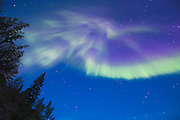 Delicate purple and green Northern Lights in the sky above McCarthy, Alaska.