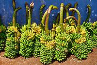 Sri Lanka, province du centre, district de Matale, Dambulla, marché de Dambulla, bananes // Sri Lanka, Ceylon, North Central Province, Dambulla, market, bananas