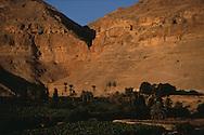 temptation monastery  jericho  Israel     ///  Le monastère de la tentation, comme suspendu aux monts de la quarantaine. En face la grotte où  jésus, dit-on, résista à Satan pendant quarante jours..  jericho  Israel montagne la quorantal.  ///     L931003b  /  R00061  /  P116509