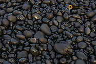Black pebbles on the beach on the Snaefellsnes Peninsula in western Iceland
