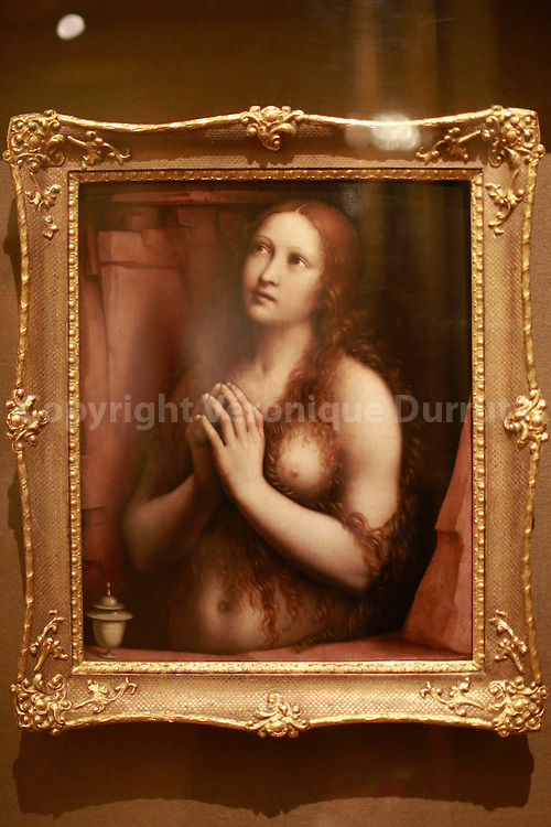 Giampietrino  ( Gian PIetro Rizzoli ), active in 1508 - 1549, Milanese School; The Repentant Magdalene, oil on wood, acquired ibn 1977, Ermitage museum, St Petersburg, Russia // Gizmpietrino  ( Gian PIetro Rizzoli ) , Marie Madeleine repentante, huile sur bois, ecole de Milan, XVIe siecle, Musée de  l'Ermitage, St Petersbourg, Russie