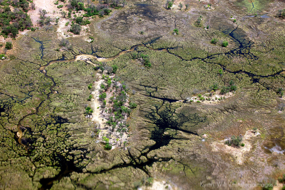 Africa, Botswana, Okavango Delta. Aerial view of Okavango Delta in October.