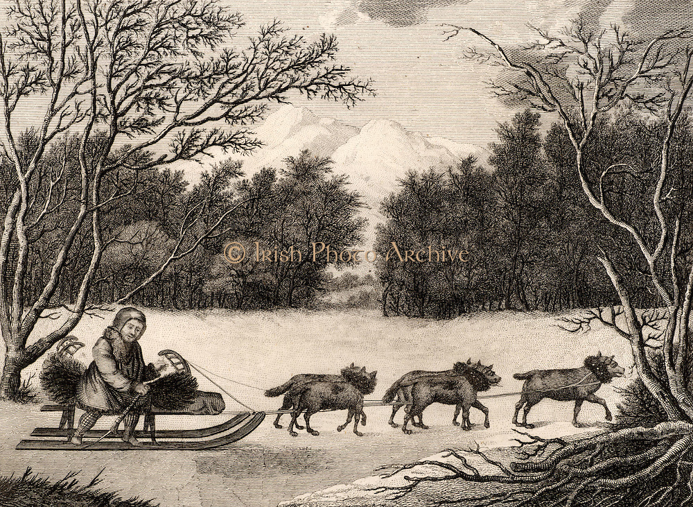 A Man of Kamtschatka Travelling in Winter'.  This man from the people ot the Kamtschatka Peninsula, Russian Far East, is dressed in animal skins and is travelling through a wooded winter landscape in a sledge pulled by a team of dogs.  Engraving from 'Captain Cook's Original Voyages Round the World' (Woodbridge, Suffolk, c1815).