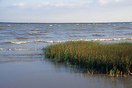 Pine Gulley inlet near Galveston Bay in Seabrook, Texas