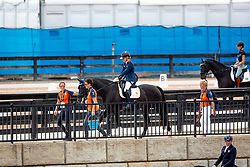 Den Dulk Nicole, NED, Wallace NOP<br /> World Equestrian Games - Tryon 2018<br /> © Hippo Foto - Dirk Caremans<br /> 18/09/2018