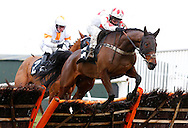 Plumpton, UK, 16th January 2017<br /> Kid Kalanisi rider by Jamie Moore clear the last to land the 'My Timeform' On The Timeform App Handicap Hurdle at Plumpton Racecourse.<br /> &copy; Telephoto Images / Alamy Live News