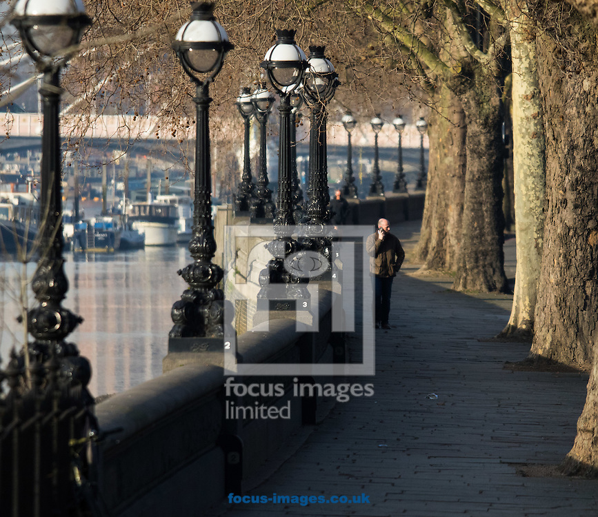 A man walks through the early morning sunshine along the River Thames at Cheyne Walk, London <br /> Picture by Paul Davey/Focus Images Ltd +447966 016296<br /> 24/02/2016