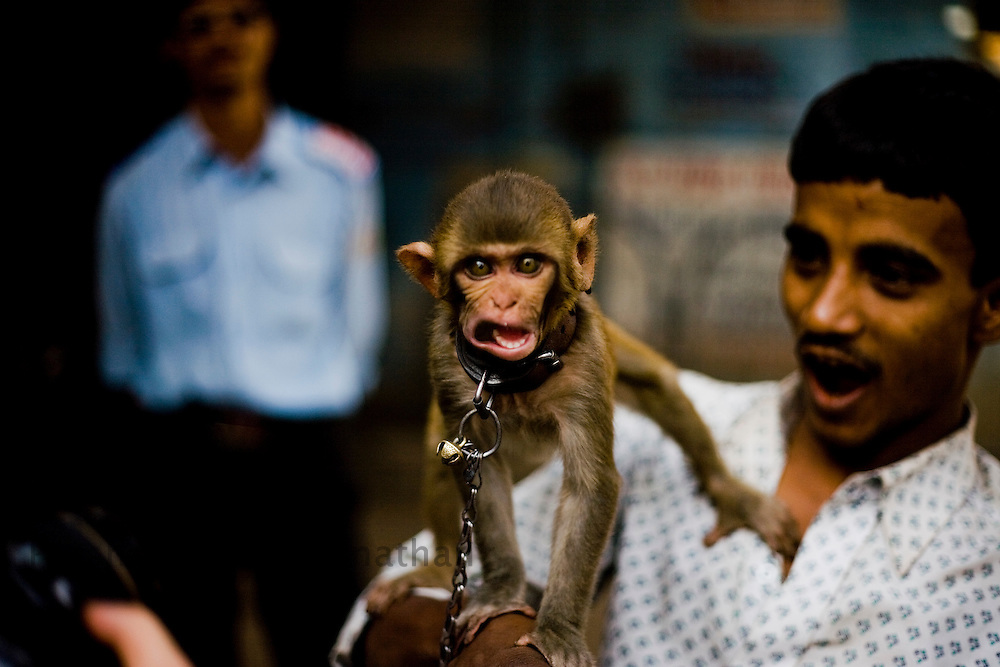 "A man plays with his pet monkey in the Daharavi slum area in Mumbai, India, on Jan. 31, 2009.A sprawling slum area in the heart of the fastest growing city in the world, Dharavi and its affiliate slum areas have been thrust into limelight in the year 2008 like never before. Earlier it was the slum redevelopment authorities who threatened to break down the shanties and build new infrastructural projects, and during the far end of the year it was the movie ""Slum Dog Millionaire"". Winning Gloden Globes, 8 Oscar's & 7 Bafta's the movie has bought to light the ruggedness and the struggle of the life in the slums of Indian cities. While the movie is a fairy tale story of positive endings the real hardship, unemployment and economic disparities seen in the slums is striking and deplorable. Yet the slums of Mumbai offer hope and oppurtunity to the few who travel and live away from their native villages and try make a living out of India's growth curve and rapid industrial progress. .. 2009 brings with it, recession, downturn and unemployment. In this scenario the life in the slum gets more rugged and difficult. This photo essay is a peek into the daily lives of city slum dwellers who live, hope, dream, relax, enjoy in the premises of these slums at the fringes of progress and development awaiting for an oppurtunity to break free into the other side."