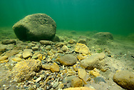 Underwater Scene (rocky lake Bottom)<br /> <br /> Engbretson Underwater Photography
