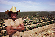 Irrigation: portrait of a field worker with [strawberry] field behind. Sprinkler irrigation. He is wet because his job is to adjust the sprinkers while they are running. Kern County, California. USA.