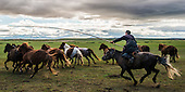 Mongolia, Traditions