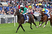 LIMATO (2) ridden by Harry Bentley and trained by Henry Candy winning The Listed Ryedale House Ganton Stakes over 6f (£50,000)  during the Newby and the Press Family Raceday at York Racecourse, York, United Kingdom on 9 September 2018. Picture by Mick Atkins.