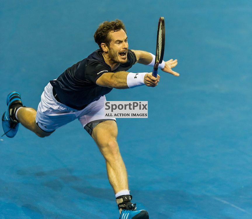 Andy Murray in action during the Davis Cup Semi-final between Great Britian and Australia (c) ROSS EAGLESHAM | Sportpix.co.uk