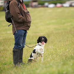 Anticipating the scurry organised by Kirkbourne Spaniels - and won it!