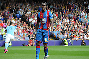 A frustrated Wilfred Zaha during the Barclays Premier League match between Crystal Palace and Manchester City at Selhurst Park, London, England on 12 September 2015. Photo by Michael Hulf.