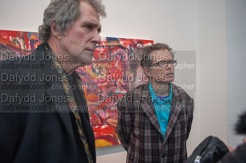 MIKE GODDARD; JIM SHAW;   JIM SHAW AT SIMON LEE GALLERY.- 12 BERKELEY ST. London. 11 February 2013.