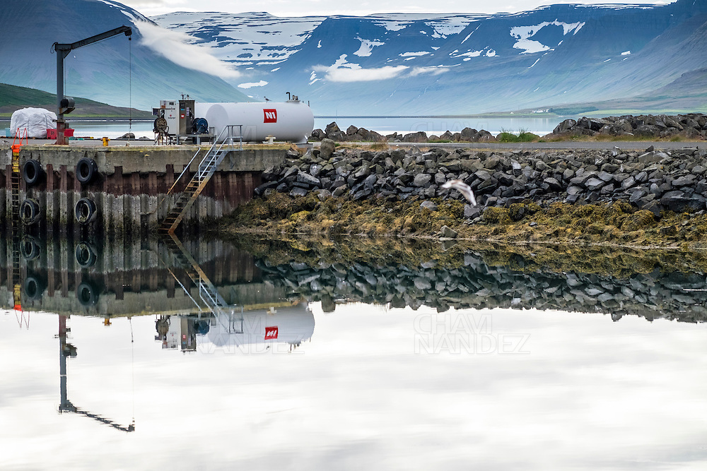 Thingeyri is a small ficherman village of the Westfjords. Iceland