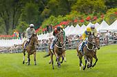 Radnor Hunt Races 2014