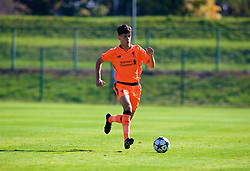LENDAVA, SLOVENIA - Tuesday, October 17, 2017: Liverpool's Anthony Driscoll-Glennon during the UEFA Youth League Group E match between NK Maribor and Liverpool at Športni Park. (Pic by David Rawcliffe/Propaganda)