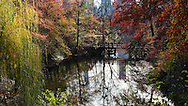 Autumn colors at a part of The Lake  known as the Upper Lobe, with a view of Oak Bridge; Central Park, New York City.