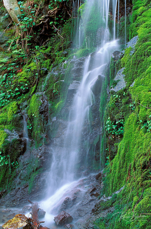 Moss covered cascade along the Rogue River, Siskiyou National Forest, Oregon.