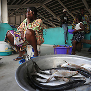 Beninese woman selling fish at a fish market in  Cotonou, Benin on March 1, 2008.
