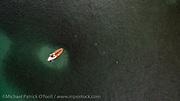 A school of Silver Mullet, Mugil curema, completely envelopes a paddle boarder offshore Singer Island September 19, 2016  during the annual mullet migration along Florida's coastline.