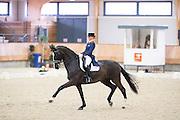Marieke van der Putten - Ambria<br /> KNHS Indoorkampioenschappen 2017<br /> © DigiShots