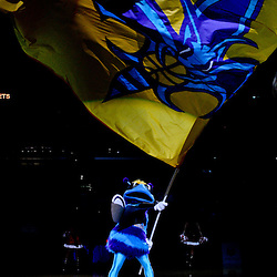 December 21, 2011; New Orleans, LA, USA; New Orleans Hornets mascot Hugo waves a team flag prior to tip off of a preseason game against the Memphis Grizzlies at the New Orleans Arena.   Mandatory Credit: Derick E. Hingle-US PRESSWIRE