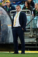 SYDNEY, NSW- NOVEMBER 15: Australian head coach Ange Postecoglou at the Soccer World Cup Qualifier between Australia and Honduras on November 10, 2017. (Photo by Steven Markham/Icon Sportswire)