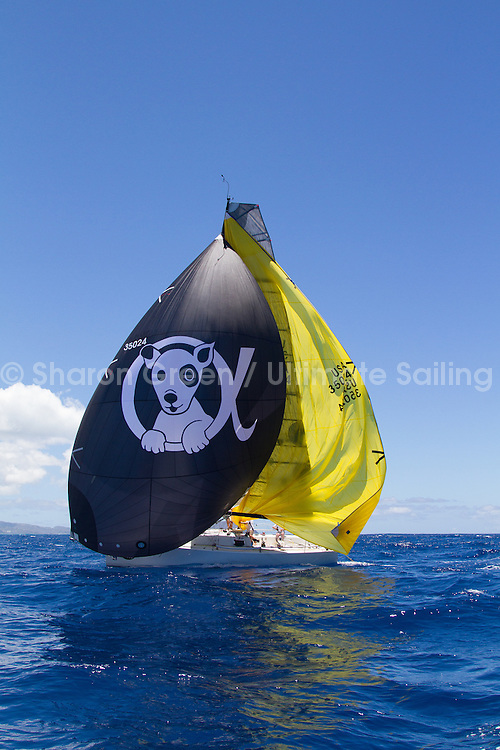 2015 Transpac finish 7_26_15 bc