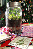 A terrarium and other things Patty and Jerry Woodbury made in an art class, photographed at their home in Kettering, Saturday, December 22, 2012.