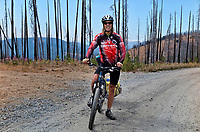 WA15235-00...WASHINGTON - Heading out through the burned forest lands of the Loomis State Forest on Road 159, following the Butler Washington Discovery Route backcountry motorcycle route.