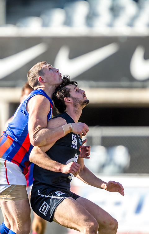 Saturday 5 August 2017<br /> <br /> 2017 AFL Victoria Development<br /> <br /> Northern Blues vs Port Melbourne<br /> Ikon Park<br /> <br /> #PJVFL #WeMarchNorth<br /> <br /> Photo Credit: Tim Murdoch/Tim Murdoch Photography