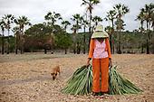 Catalogo TOCA - A Gente Transforma - Chapada do Araripe, Piauí