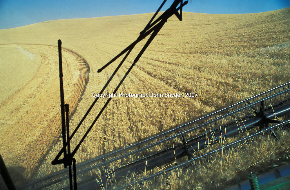 Birdseye view from a combine window, harvesting in the rich Palouse region near Colfax, Washington.