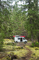 National Forest near Welches, Oregon.