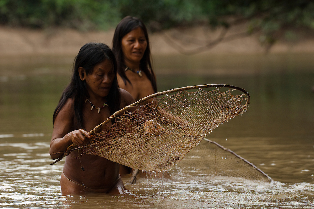 Huaorani Indians Ewa Kemperi and Awame Gomoke fishing with home made nets. The nets are made from chambira palm fibres.<br /> Bameno Community. Yasuni National Park.<br /> Amazon rainforest, ECUADOR.  South America<br /> This Indian tribe were basically uncontacted until 1956 when missionaries from the Summer Institute of Linguistics made contact with them. However there are still some groups from the tribe that remain uncontacted.  They are known as the Tagaeri &amp; Taromenane. Traditionally these Indians were very hostile and killed many people who tried to enter into their territory. Their territory is in the Yasuni National Park which is now also being exploited for oil.