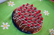 A chocolate cake with raspberries sits on a colorful tablecloth.