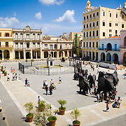 Constructed in 1559, it was originally called Plaza Nueva. Over the years, it has seen many events and changes including markets, bullfights, fiestas, car parking and a couple of name changes. It's currently called Old Square, or Plaza Vieja.