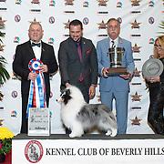 Beverly Hills 03/01/2020