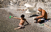 a boy, a man, and a swan enjoy a small rocky beach on Lac Lemon (Lake Geneva).<br /> <br /> *Awarded &quot;Editor's Choice&quot; - NashvilleArts magazine 2013 photo competition