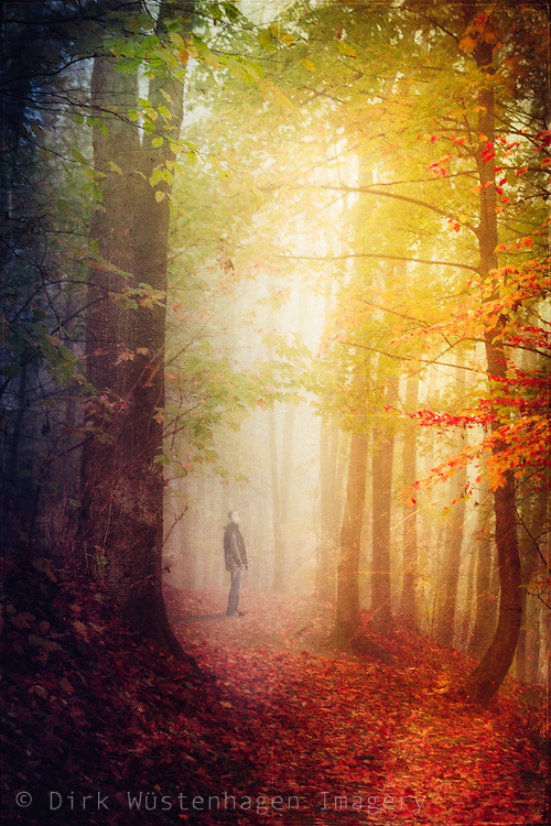 Man standing in the light on a forest path - <br /> texturized photograph