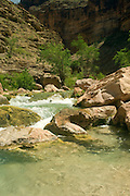Scene along Havasu Creek, Havasupai Indian Reservation, Grand Canyon National Park, Arizona, US