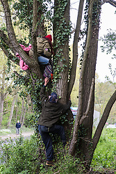 Harefield, UK. 27th April 2019. Environmental activists from Colne Valley Action sit in trees to prevent their felling as part of work scheduled for this weekend for the HS2 project. The Colne Valley is an area of natural beauty and large areas of trees have been felled there for HS2 in recent weeks. Protesters based at the Harvil Road Wildlife Protection Camp are seeking to prevent further destruction.