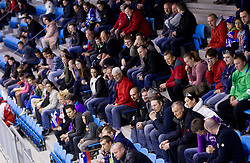 Fans of Slovenia during Friendly Ice-hockey match between National teams of Slovenia and Austria on April 19, 2013 in Ice Arena Tabor, Maribor, Slovenia.  Slovenia defeated Austria 5-2. (Photo By Vid Ponikvar / Sportida)