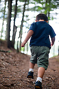 Holden Miller, 3, runs along a forest trail near Sayner, Wis., on Aug. 5, 2010. The photo was made during a summer vacation with the Stute family while staying in a rented cottage in Wisconsin's Northwoods.