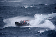 Sea Shepherd crew brace rough seas in an inflatable fast boat during a deployment to pursue Japanese harpoon ship, the Yushin Maru No. 2, on Saturday, Dec. 20, 2008.  The mission was called off when a blizzard set in, forcing crew to give up their chase. (Photo by Adam Lau)